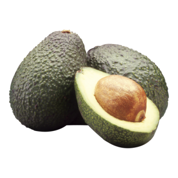 AVOCADOES MEDIUM