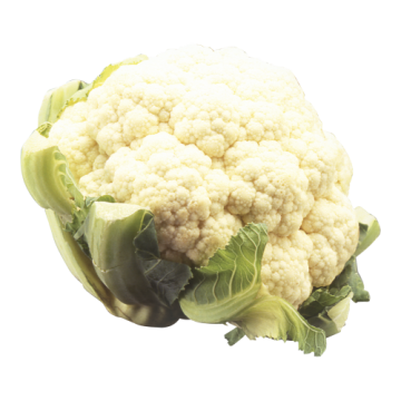 CELLO CAULIFLOWER